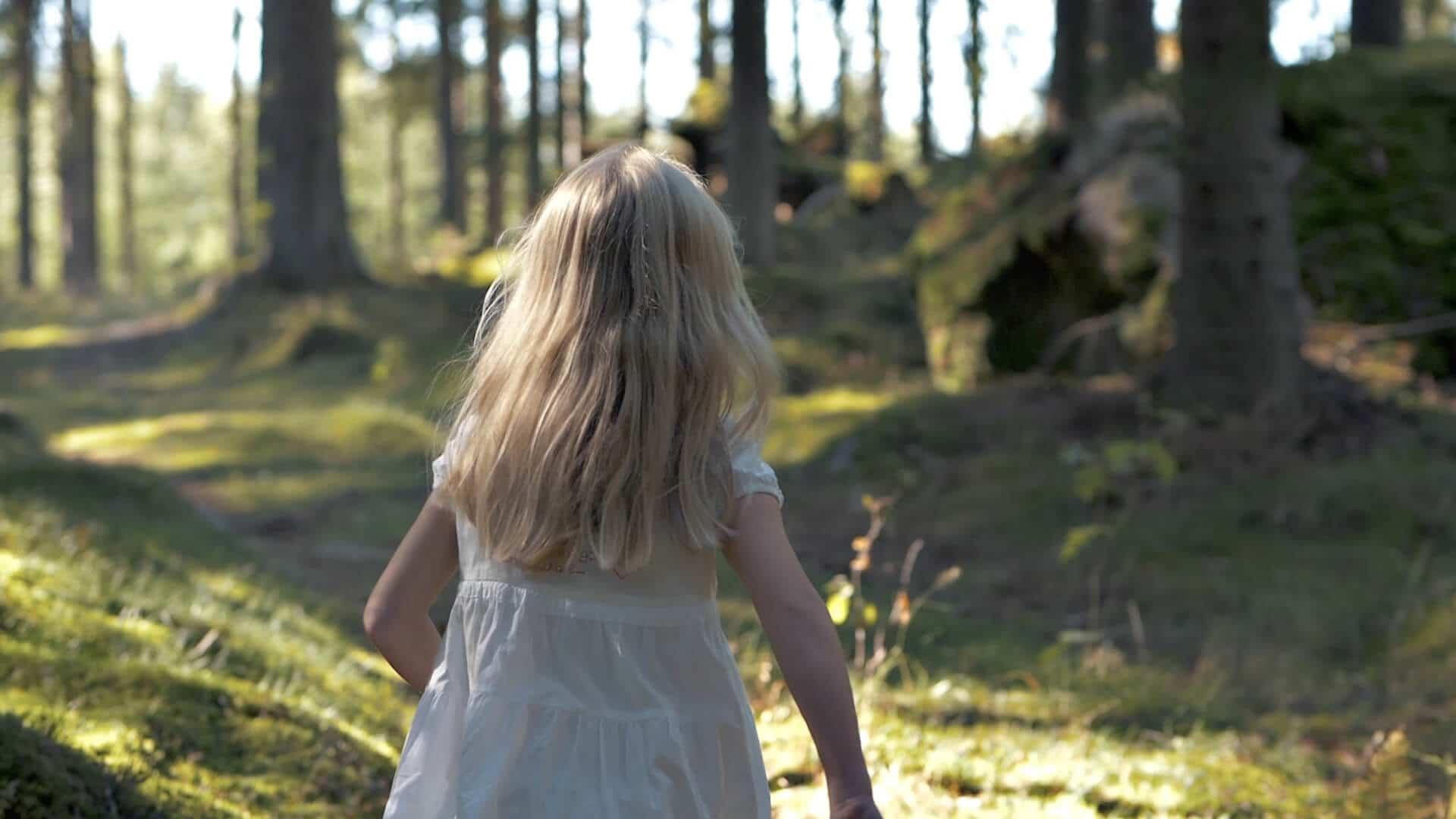 Film – Våra värden växer i skogen // Vida AB