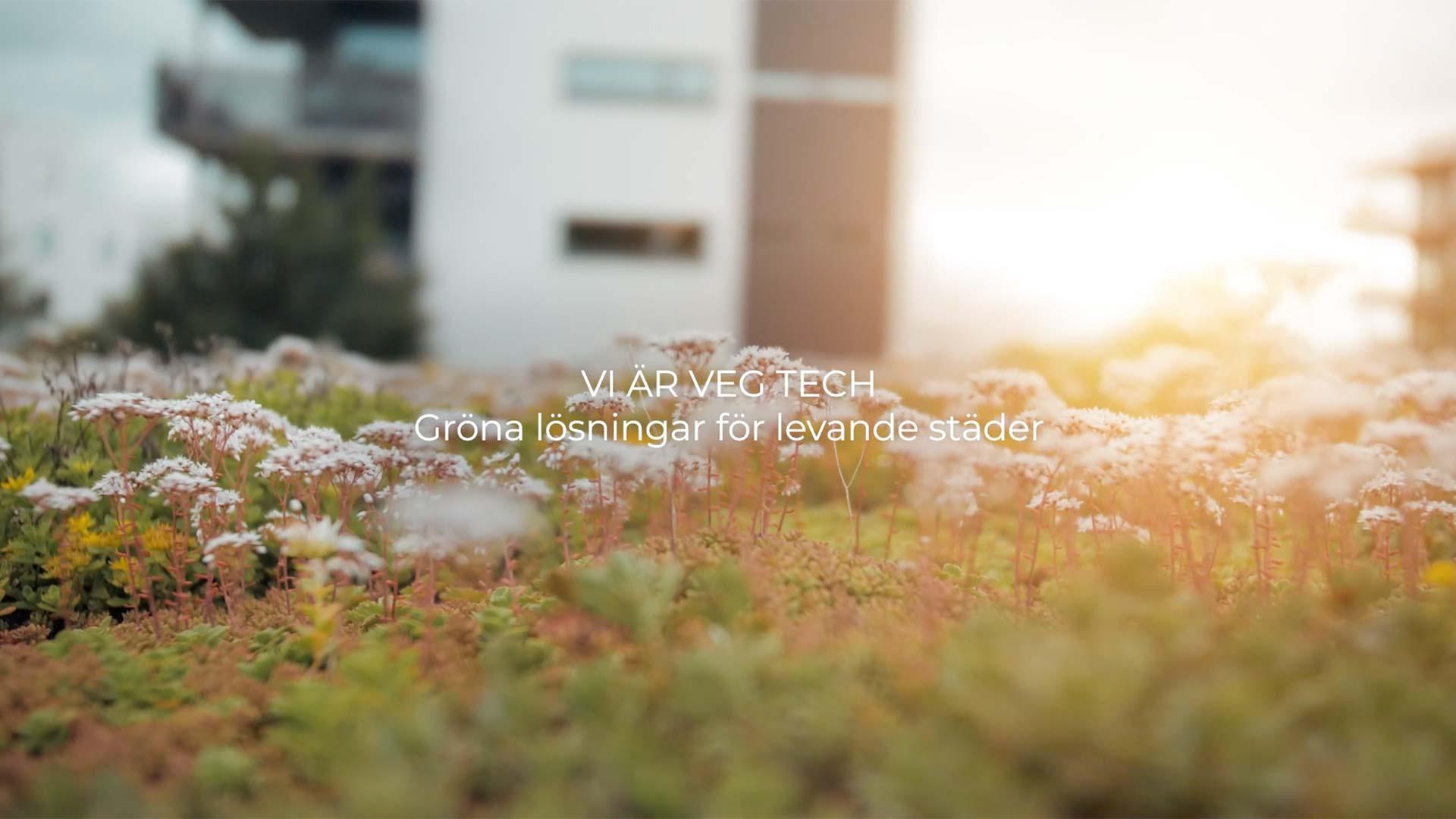 Film – Vi är Veg Tech // Veg Tech