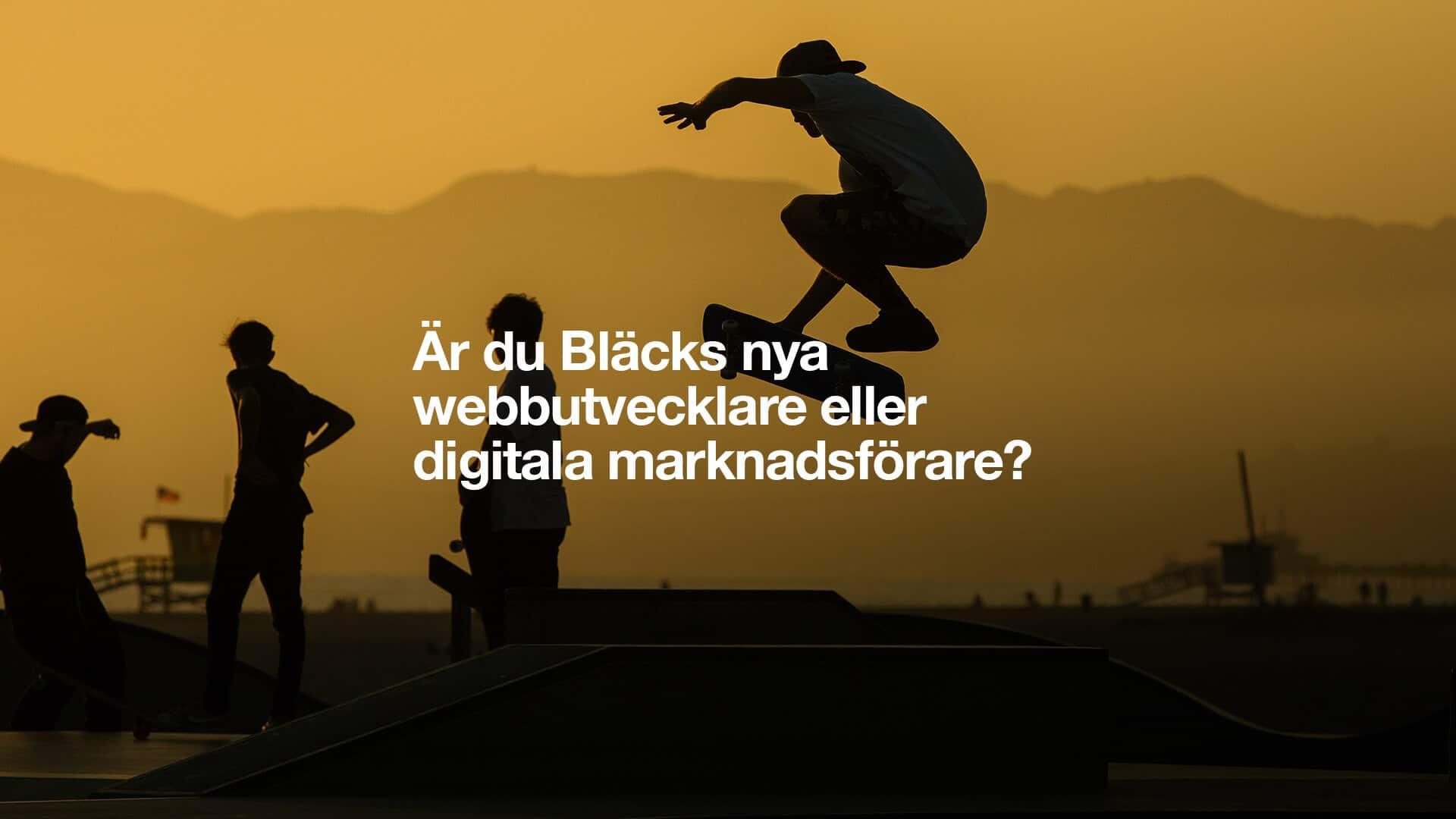 Webbutvecklare och Digital marknadsförare